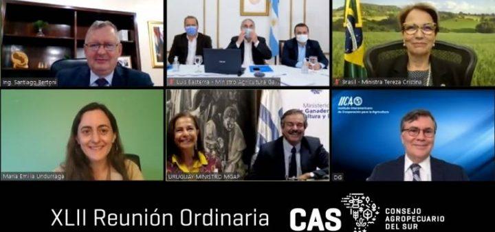 Paraguay und andere Länder der Region fordern Beitritt zum UN-Lebensmittelgipfel