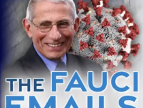 Vertuschung und Unwahrheiten im großen Stil: Meineid von Anthony Fauci – Beweise: Mails von Anthony Fauci