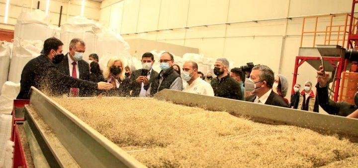 Paraguay exportiert zum ersten Mal aus Cannabis gewonnene Lebensmittel nach Europa